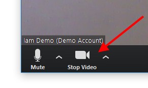 """Stop Video"" button to mute camera"